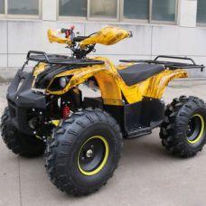 Электроквадроцикл GreenCamel Atakama T200 800W